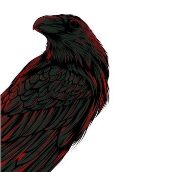 Corvo escuro