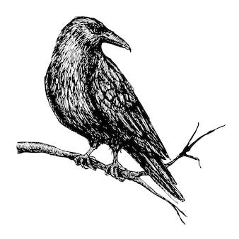 Corvo no desenho de ramo de árvore