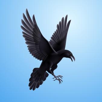 Corvo preto sobre fundo azul
