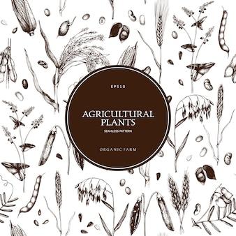 Costura padrão com mão desenhada culturas de cereais e plantas leguminosas.
