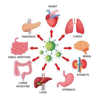 Covid-19 e ilustração de órgãos humanos