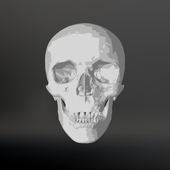 Crânio branco sobre fundo preto.