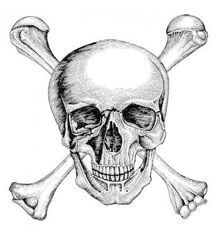 Crânio com ossos cruzados, símbolo de pirata, mão de logotipo desenho estilo vintage