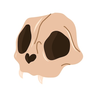 Crânio de animais com presas. elementos de design mágico de feitiçaria. ilustração em vetor mão desenhada dos desenhos animados.