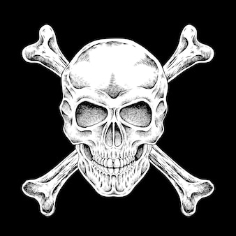 Crânio desenhado à mão em estilo requintado sobre fundo preto