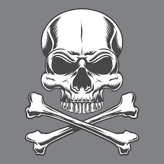 Crânio e ossos cruzados isolados em cinza