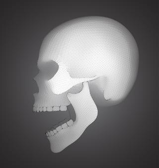 Crânio humano de vetor na cor de fundo. um símbolo da morte, halloween, o dia dos mortos e ataques de hackers
