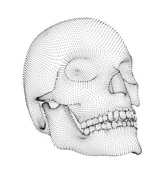 Crânio humano de vetor. volume de pontos e polígonos. o conceito de morte e horror. feriado do dia dos mortos