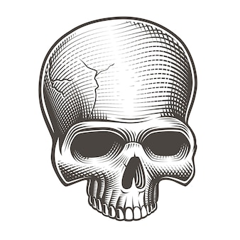 Crânio preto e branco no estilo de gravura em branco