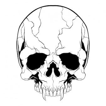 Crânio preto e branco