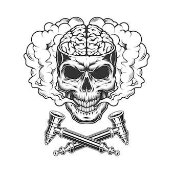 Crânio vintage com cérebro humano