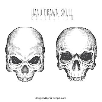 Crânios desenhados mão