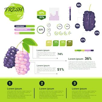 Crescimento de frutas naturais de infográficos orgânicos frescos, agricultura e agricultura