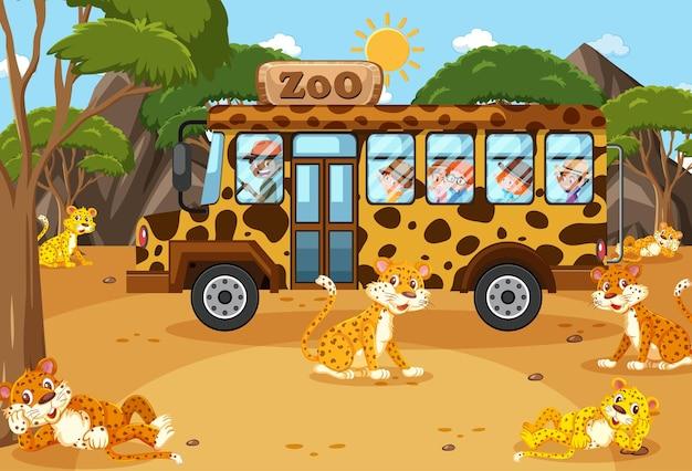 Crianças em um carro de turismo observando um grupo de leopardos na cena do zoológico