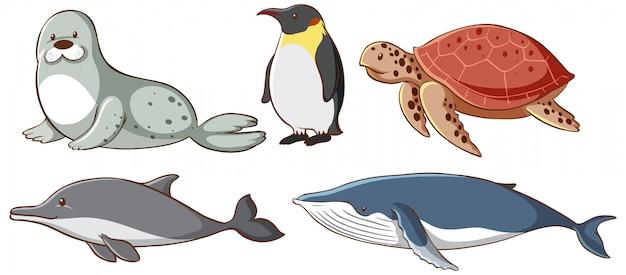 Criaturas do mar isoladas Vetor grátis
