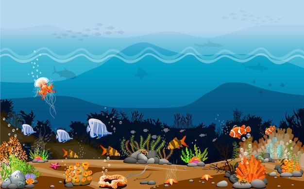 Criaturas que vivem sob o oceano