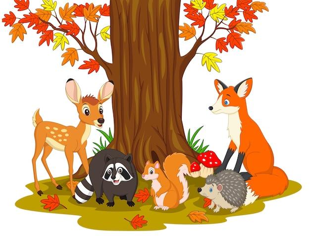 Criaturas selvagens dos desenhos animados na floresta