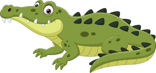 Crocodilo de desenho animado isolado no branco