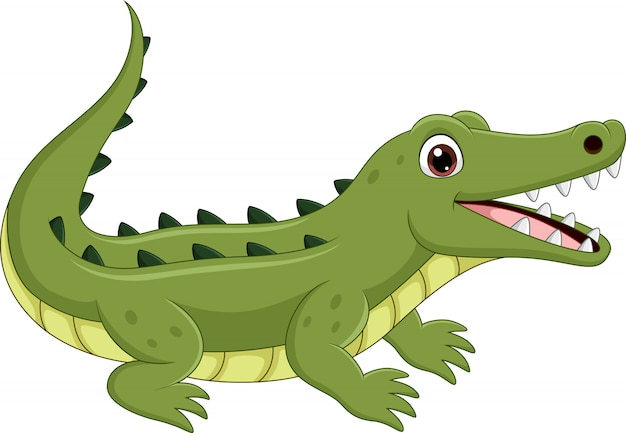Crocodilo de desenhos animados isolado no branco