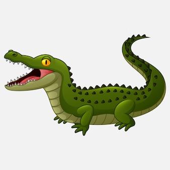 Crocodilo de desenhos animados isolado no fundo branco
