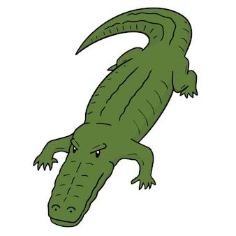 Crocodilo de desenhos animados