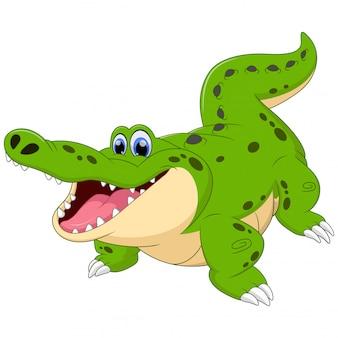 Crocodilo dos desenhos animados, isolado no branco