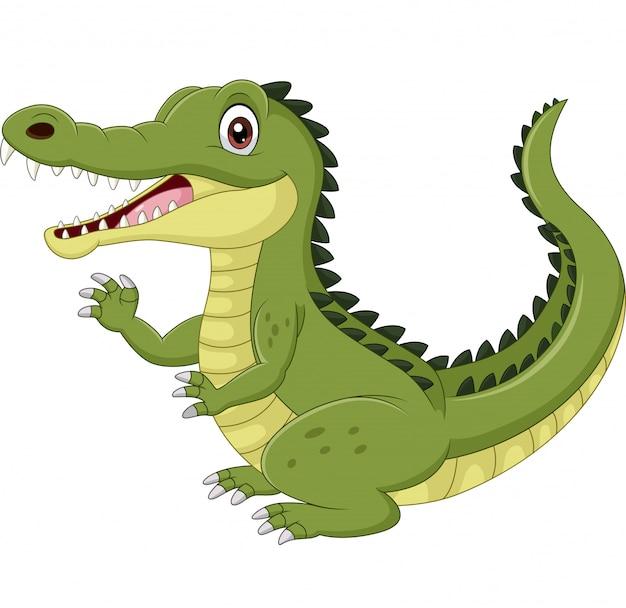 Crocodilo engraçado dos desenhos animados, acenando a mão isolado no branco
