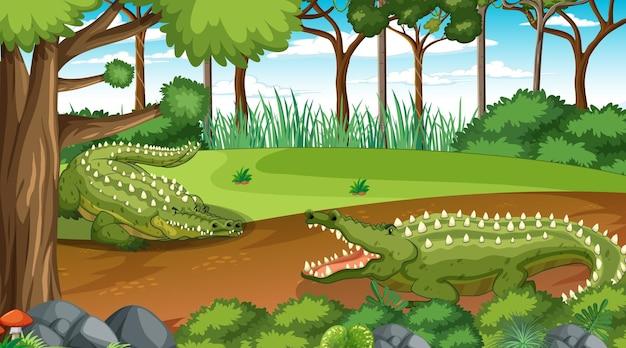 Crocodilo na floresta em cena diurna com muitas árvores