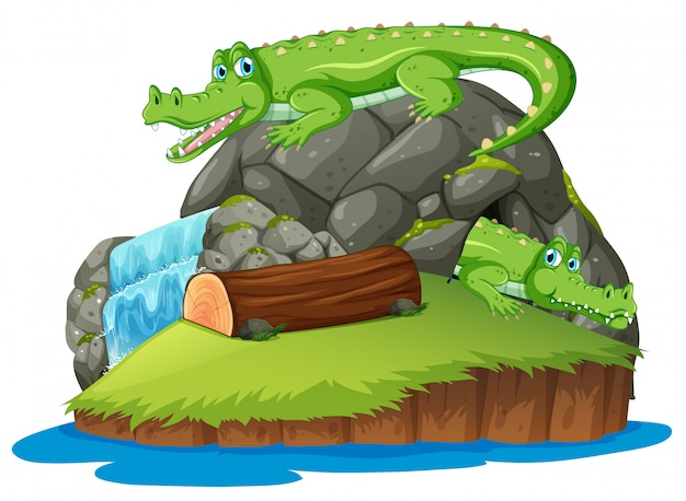 Crocodilo na ilha isolada