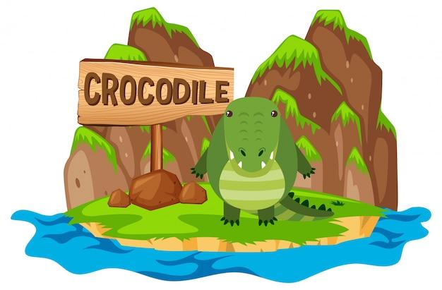 Crocodilo na ilha