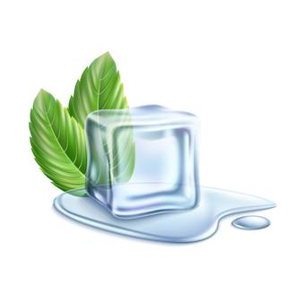 Cubo de gelo com folhas verdes de hortelã
