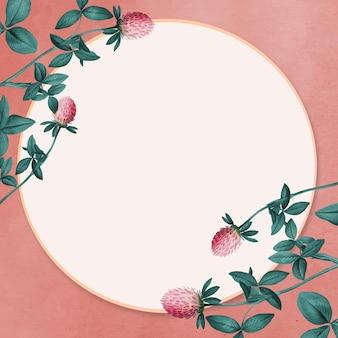 Cudweed decorado vetor de espaço em branco