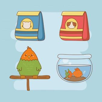 Cuidado de mascote conjunto de ícones