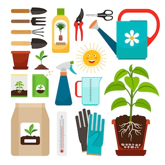 Cuidados de plantas de interior e ícones de jardinagem interior