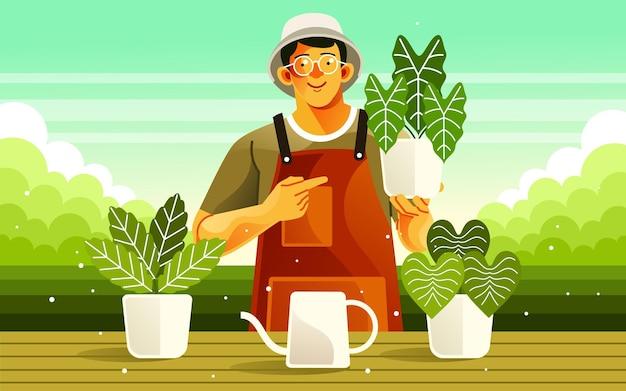Cuidando de plantas de casa