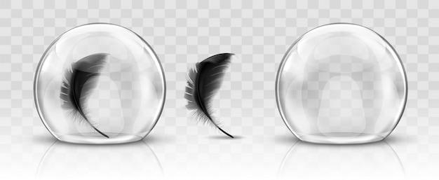 Cúpula de vidro ou esfera e pena preta realista