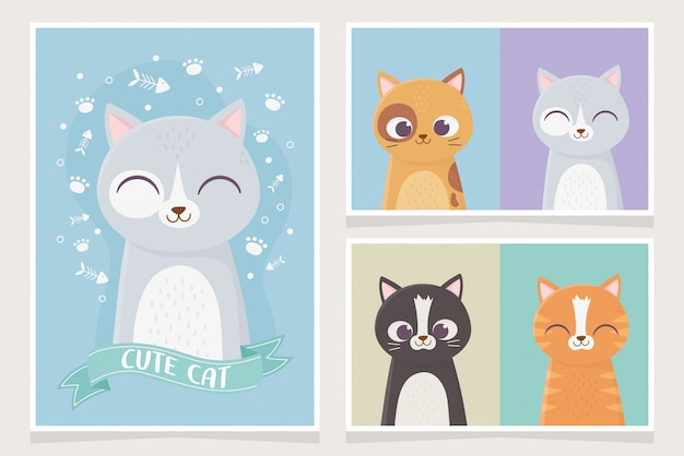 Cute cats pet differents character feline character cartoon illustration