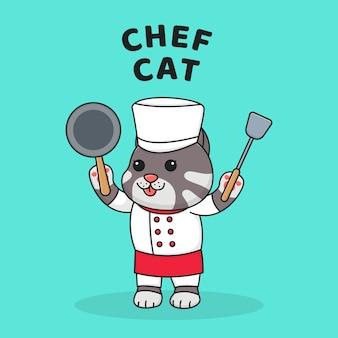 Cute chef cat