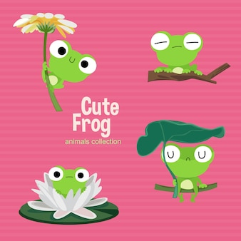 Cute frog animals collection
