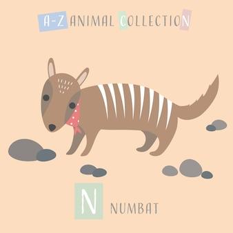Cute numbat cartoon doodle alfabeto animal n