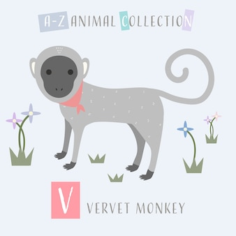 Cute vervet monkey cartoon doodle alfabeto animal v