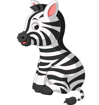 Cute zebra dos desenhos animados