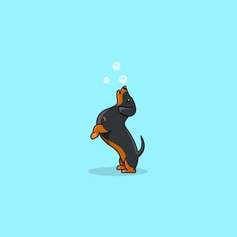 Dachshund cão salto bonito com logotipo de vetor de bolha.
