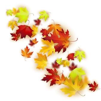 De fundo vector com folhas de outono coloridas