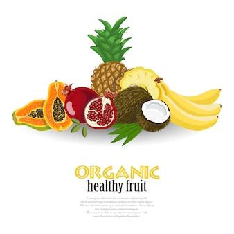 De fundo vector com frutas exóticas