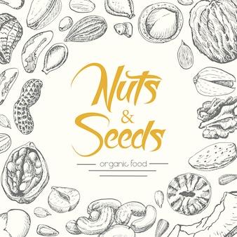 De fundo vector com nozes e sementes
