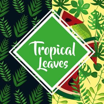 Decoração de folhas tropicais