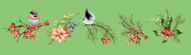 Decoração floral vintage definida com galho seco de pinheiro, bagas vermelhas, cinzas de montanha, passarinho vermelho, pássaro cinza. Vetor Premium