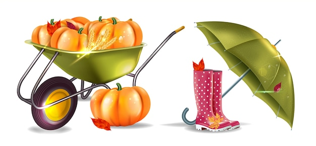 Defina ícones de outono realistas. botas de borracha, abóboras, carrinho de mão de jardim