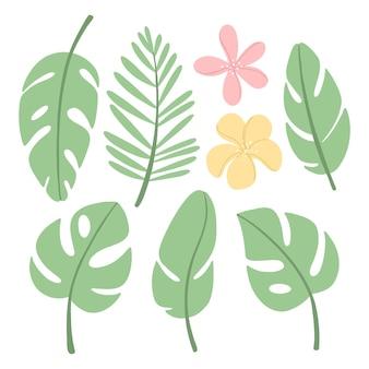 Definido com diferentes folhas e flores tropicais
